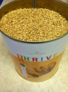 Thrive Winter Wheat
