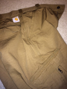 Carhartt Force Pants