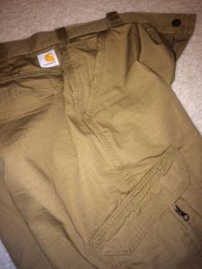 Carhartt Force Pants